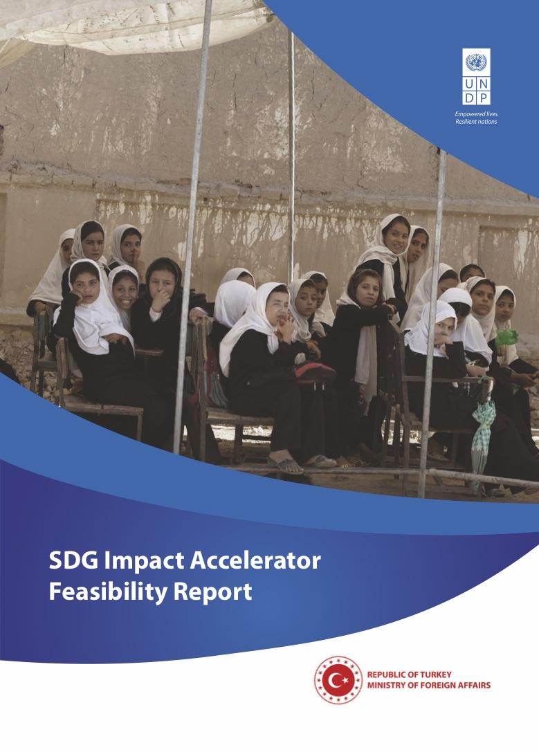 SDG-Impact-Accelerator-Feasibility-Report